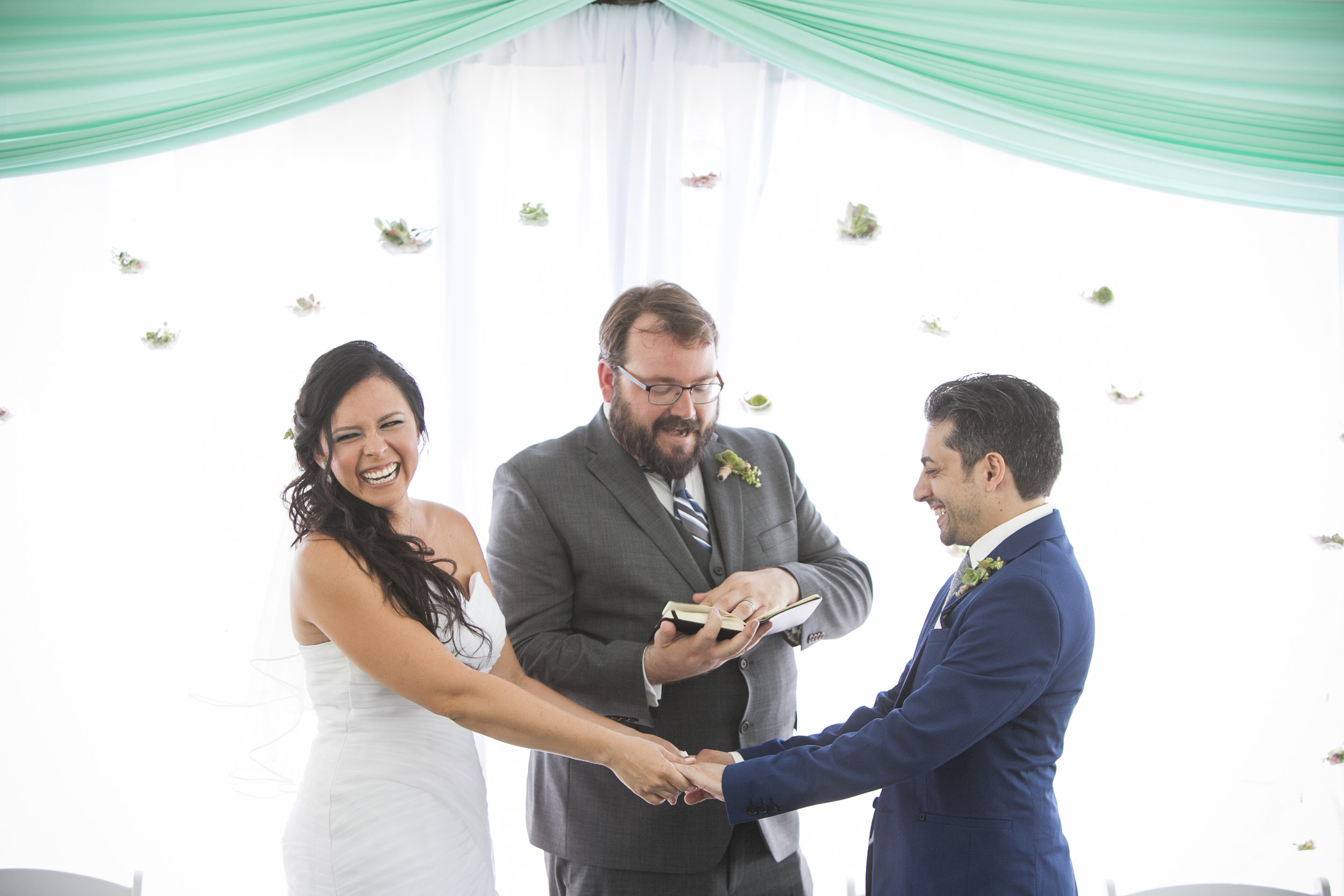 How I Unexpectedly Became A Wedding Officant… - …And Loved Every Moment of It!Photo by Author