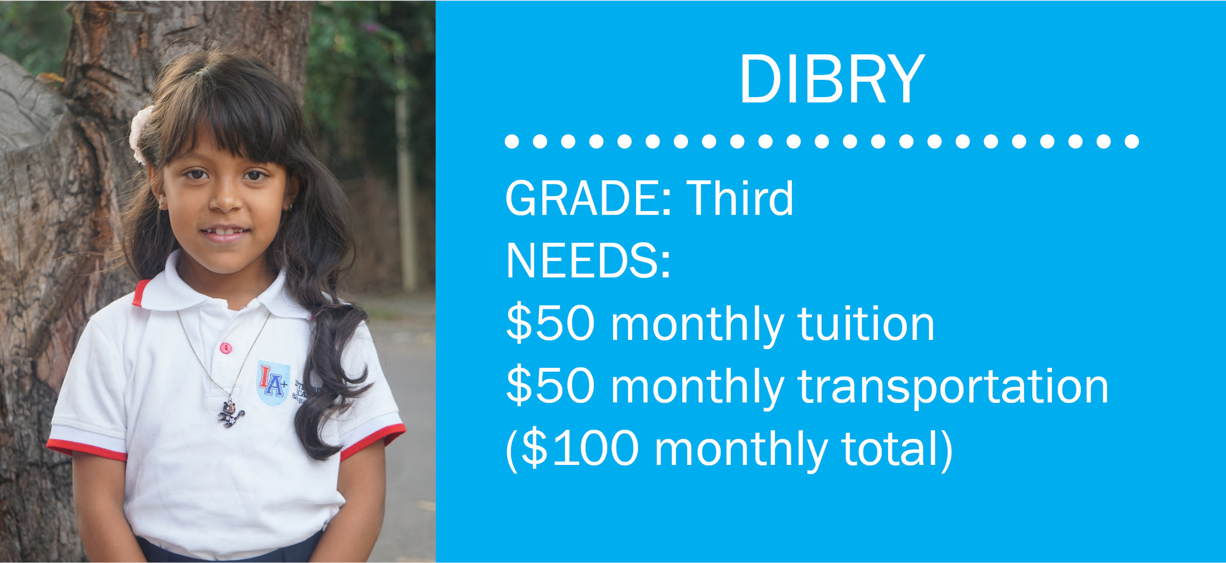 Click here to make a contribution toward Dibry's monthly needs.  Or email mail@bchonduras.org.