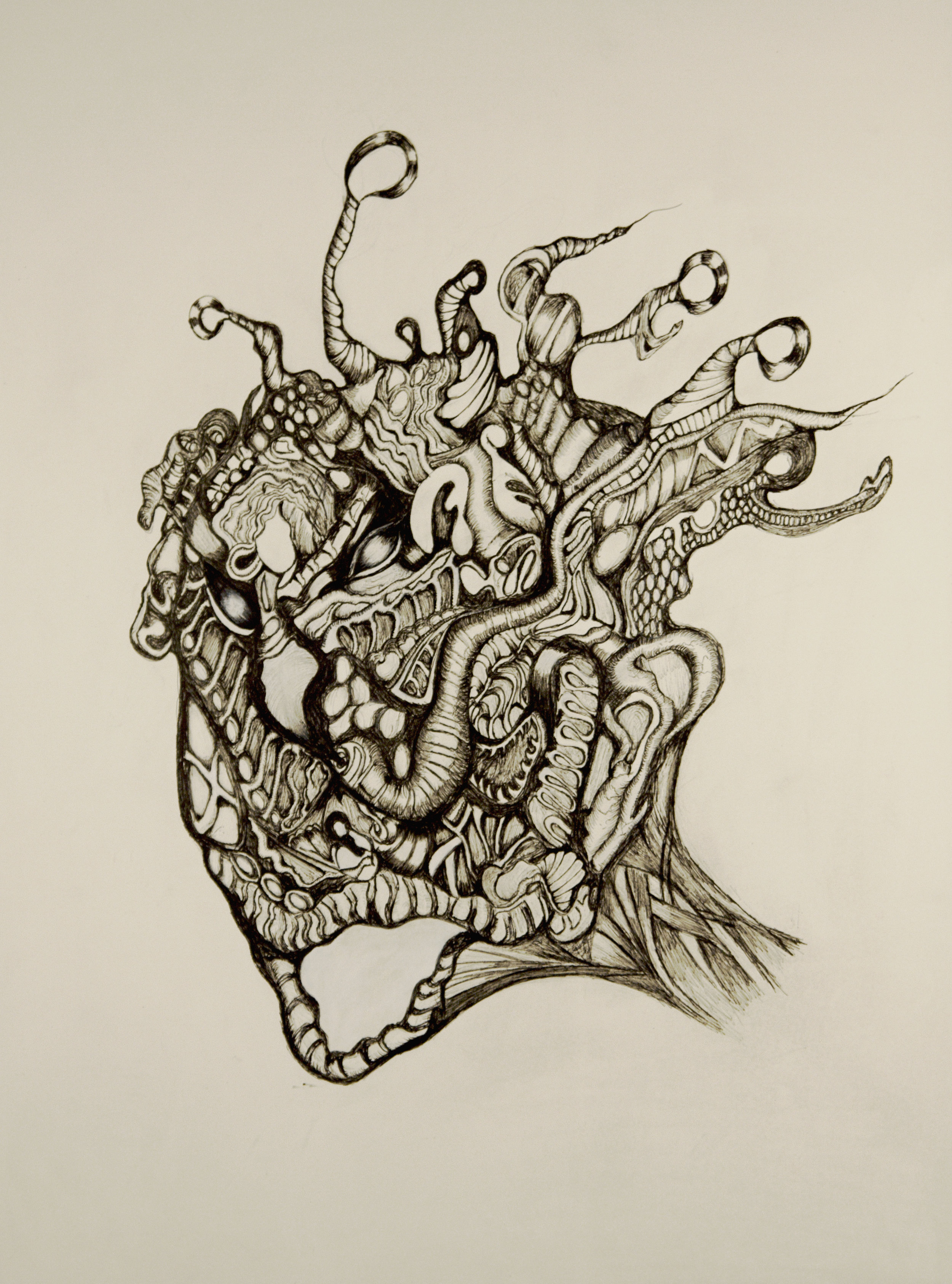 illustration_3
