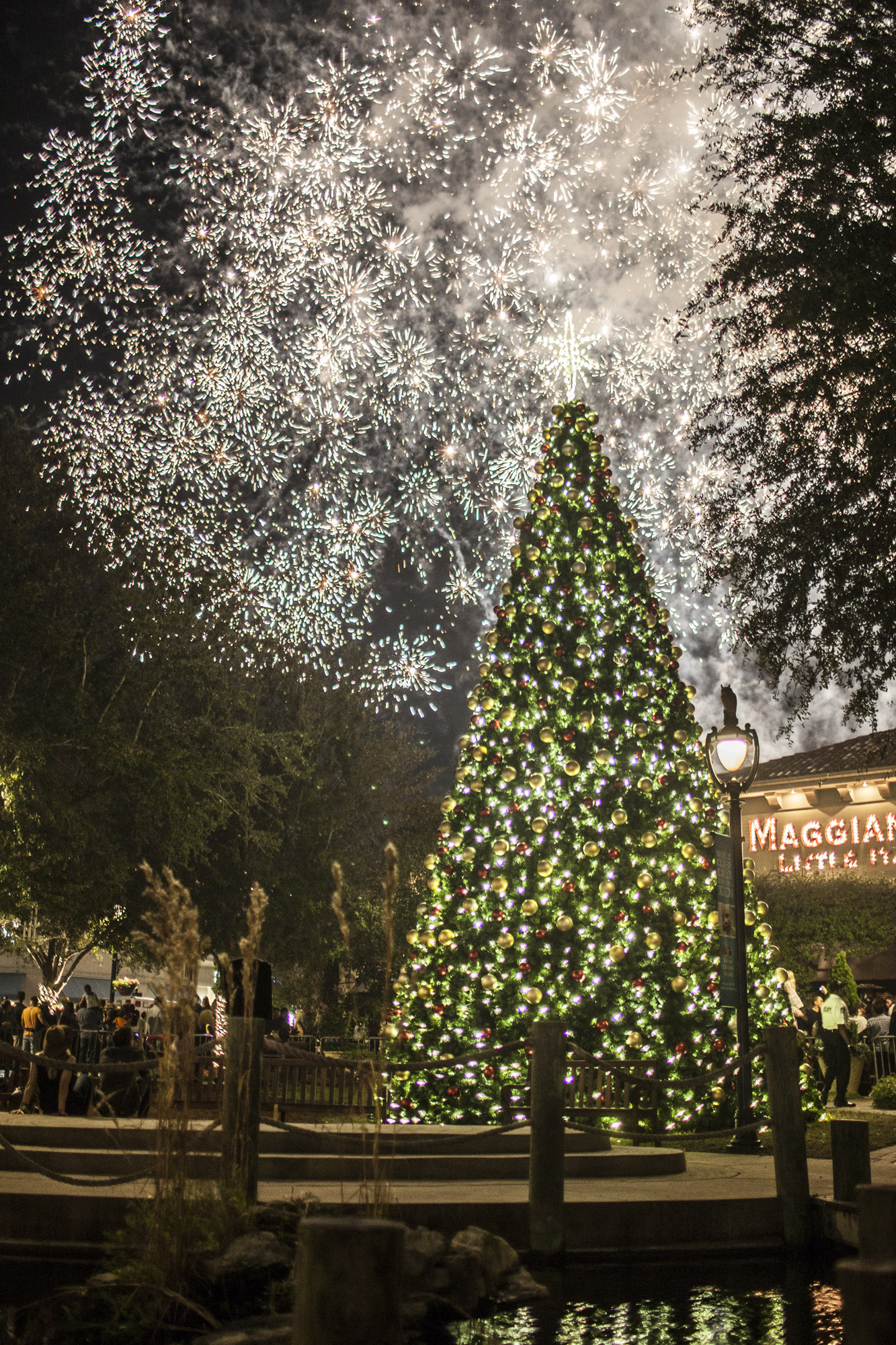 Bring the whole family out to the St. Johns Town Center today for some holiday fun! - Events start Saturday at 2 pm. (Saturday, November 11, 2017)