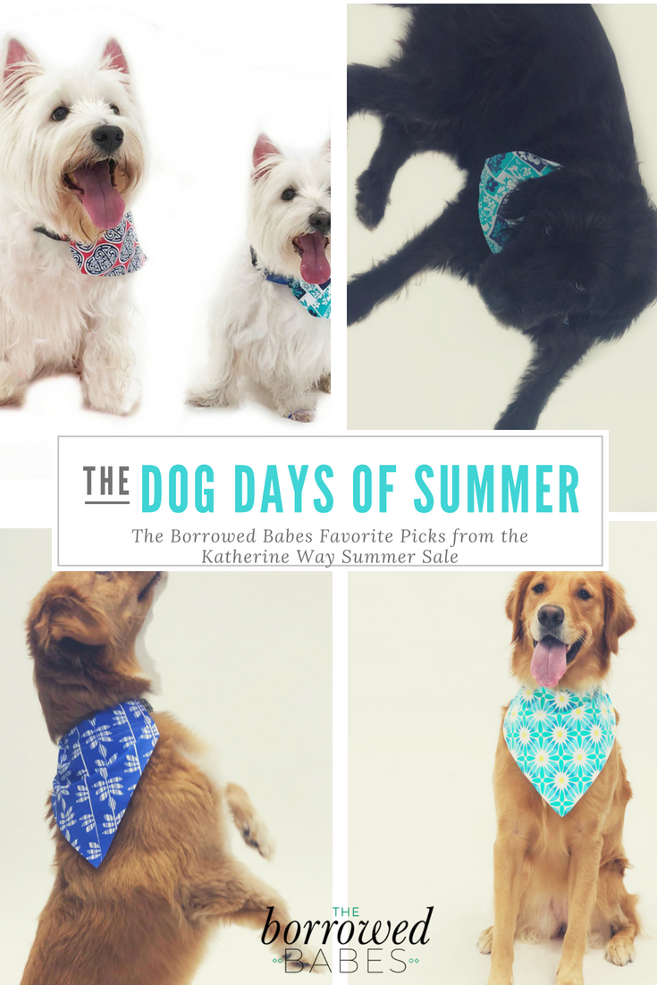 DOG DAYS OF SUMMER Picks by The Borrowed Babes Fashion Blogger Stephanie Mack Jacksonville Florida Blogger.png