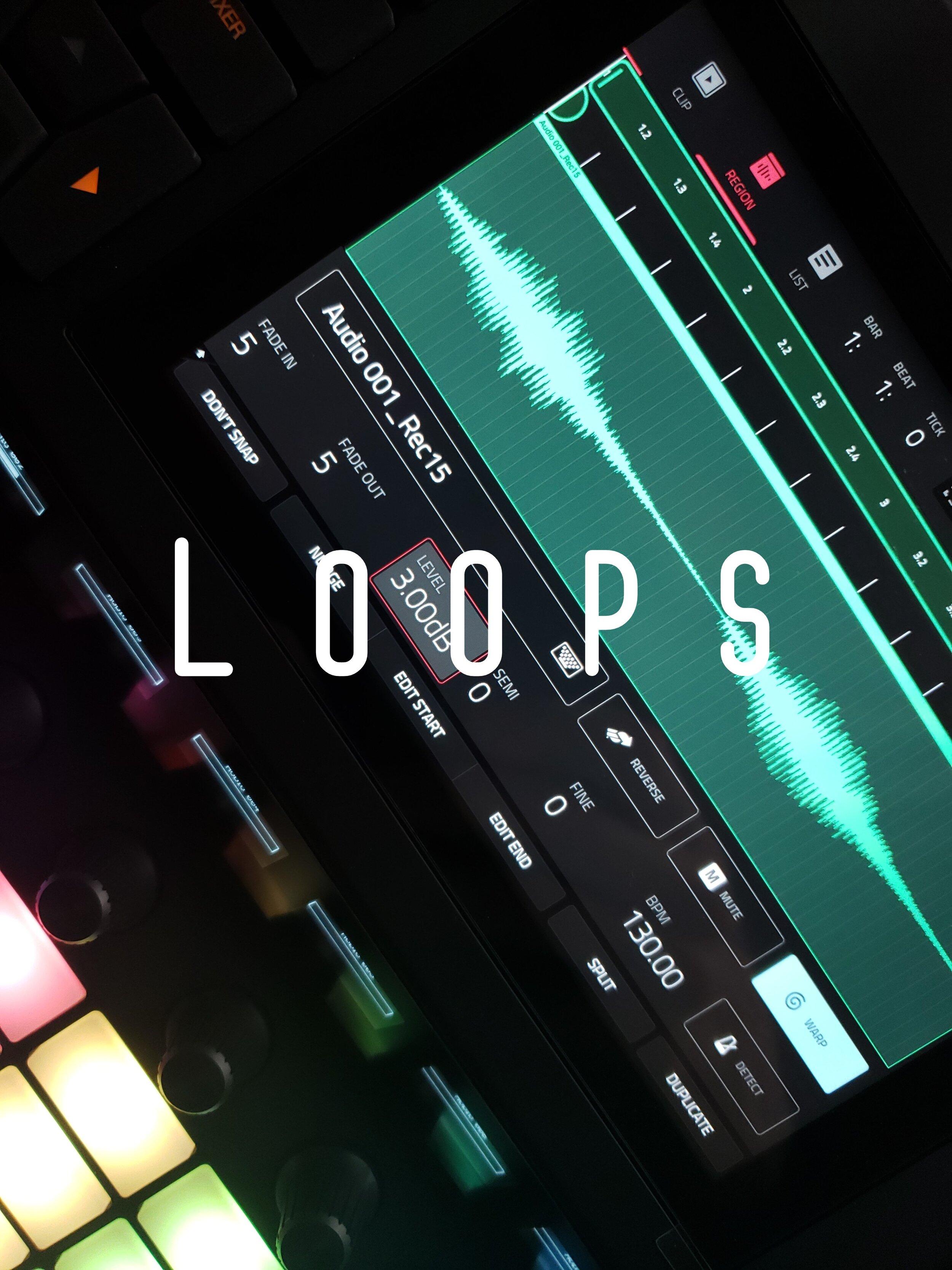 20191004_125909.loops.mk1.jpg