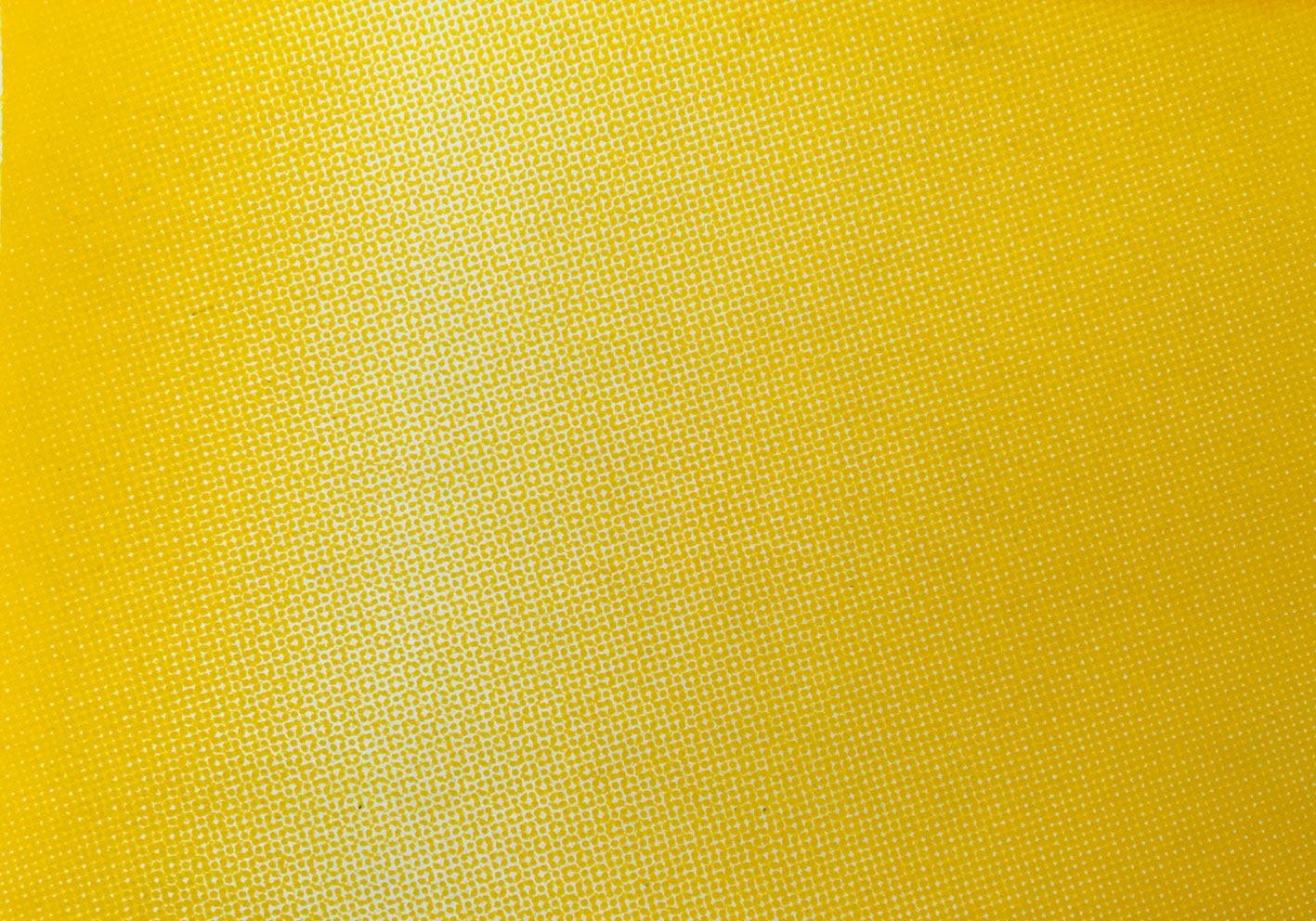 half_tone_gradient 0171w.jpg
