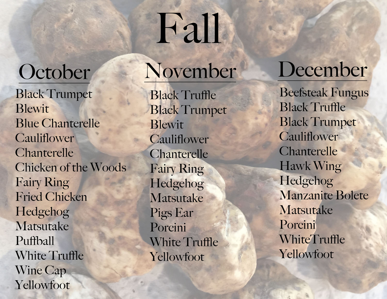 White truffle text.jpg
