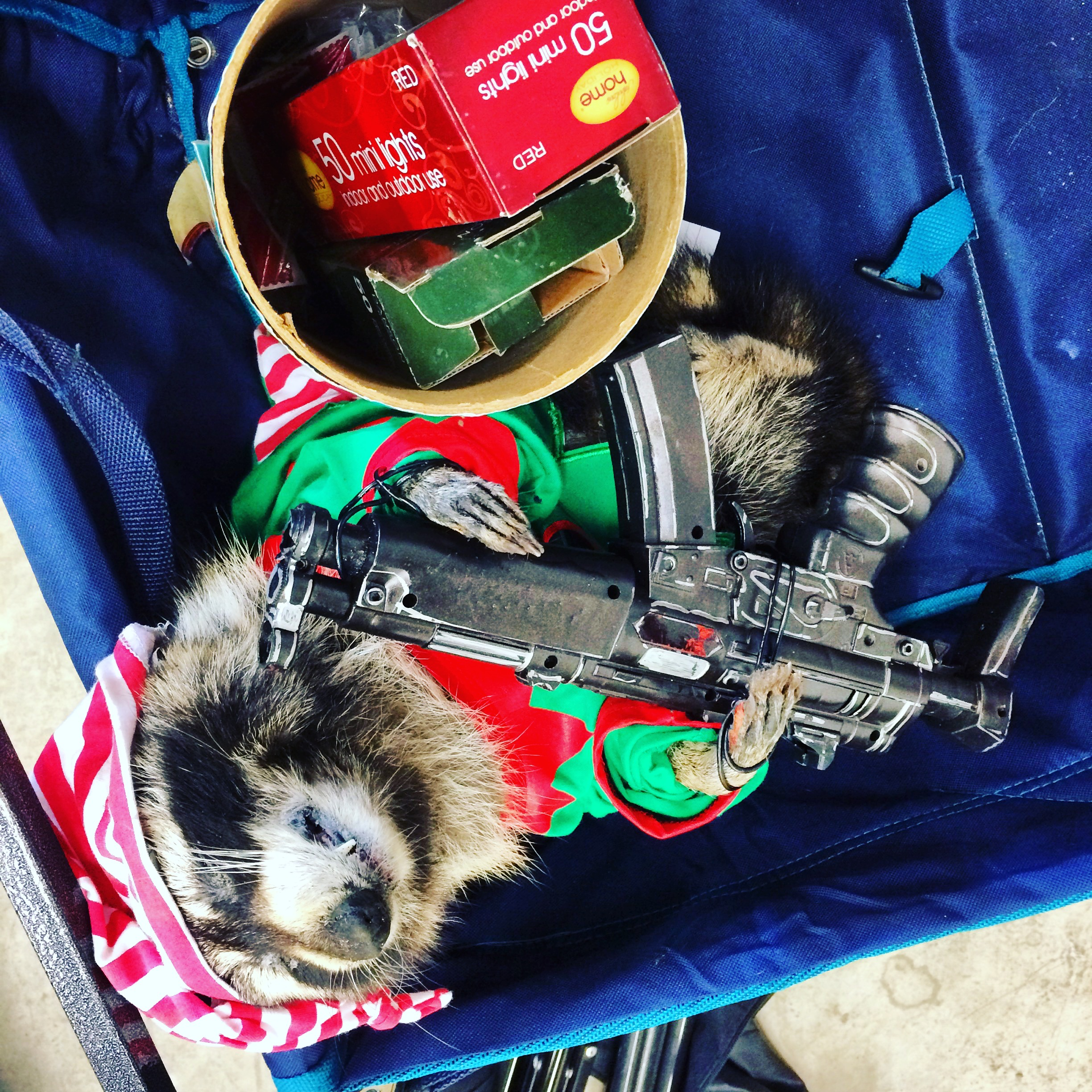 The trick to making a killer raccoon intimidating is to add a Savage Tech prop raccoon machine gun or sniper rifle!