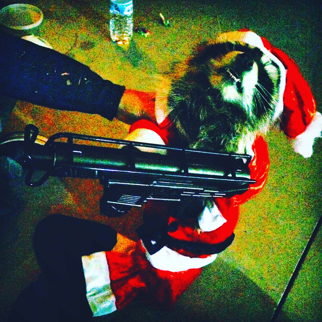 Raccoon modeling the tiny machine gun prop   Killer Raccoons! 2! Dark Christmas in the Dark!