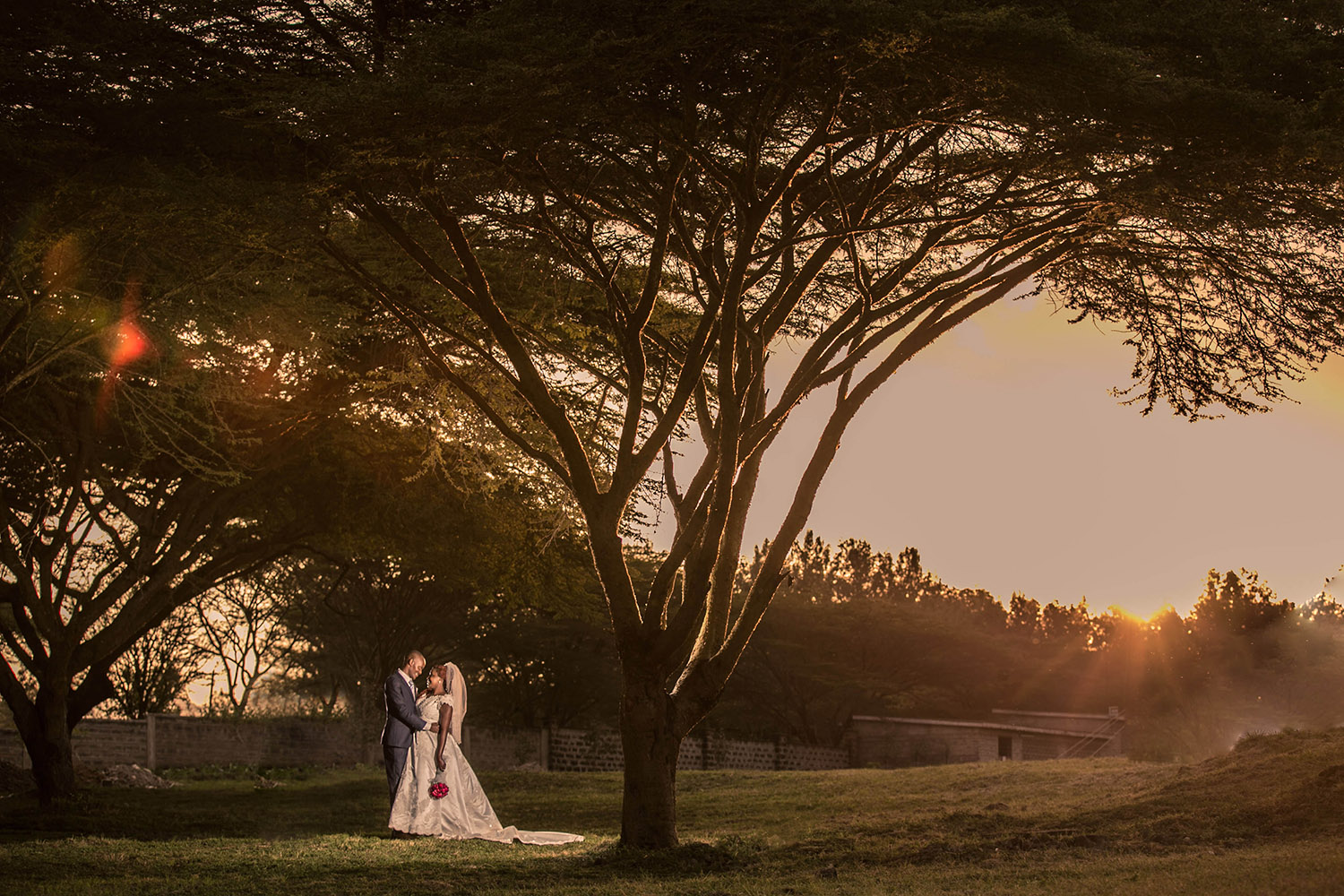 kenya-wedding-acacia-tree.jpg