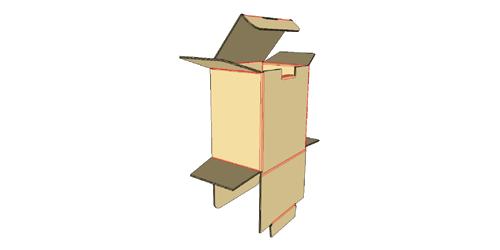Erect box -