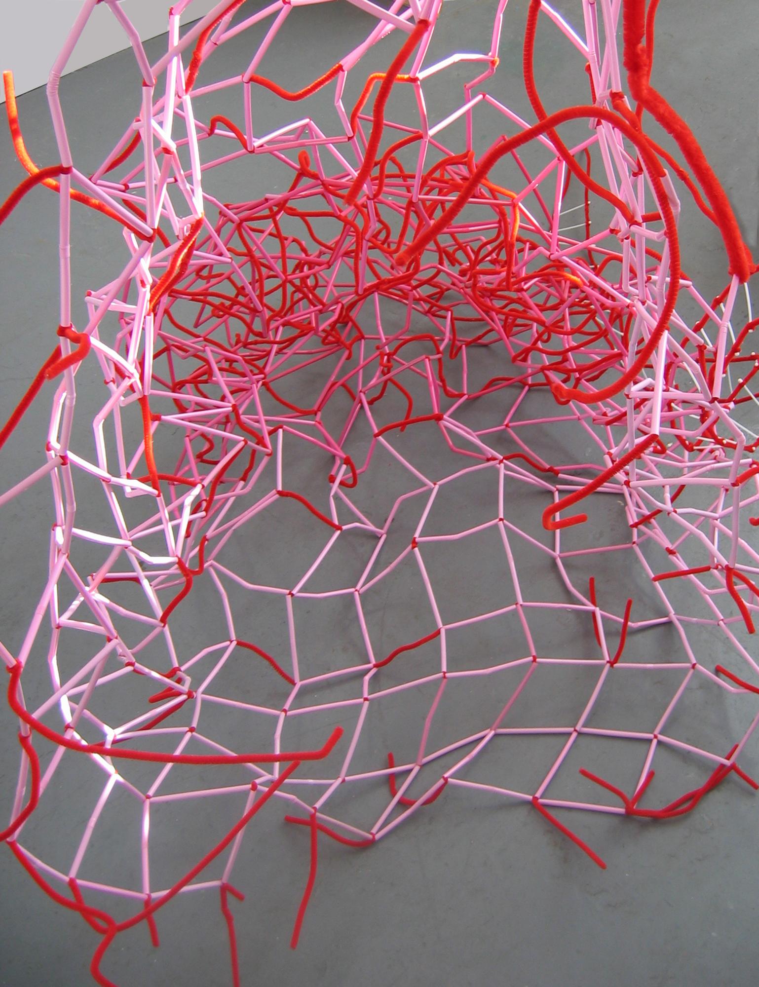 Nets  Detail