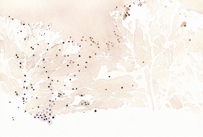 "Flight Patterns  watercolor on paper  7x10"""