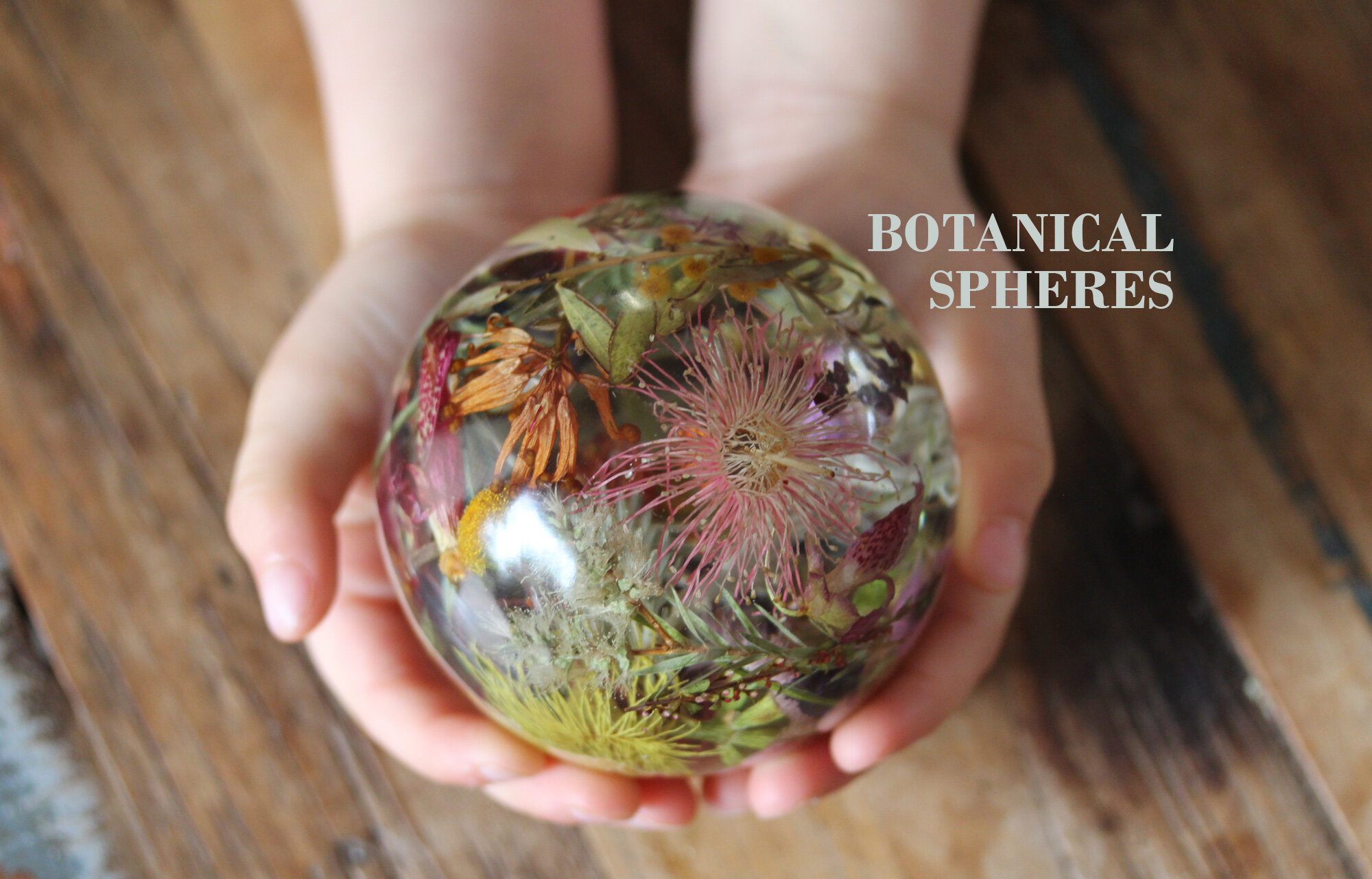 Botanical-Spheres_ellie.jpg