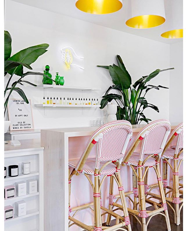 Fresh style and colorful vibes @lemon_laine • PS Please come to Vegas next 🌿#style #design #wallpaper #decor #love #pretty #palmleaves #gold #pink 📷 @homepolish