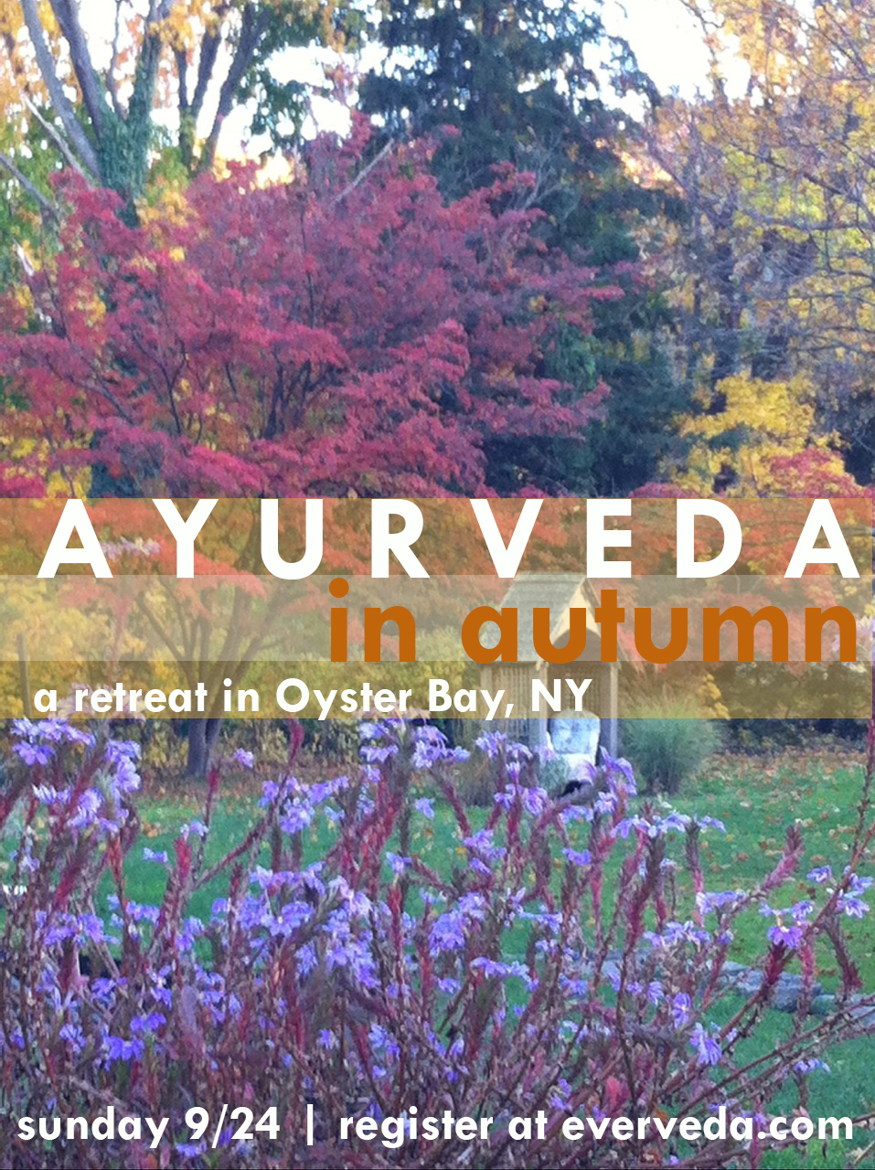 EverVeda Autumn Promo Image.jpg