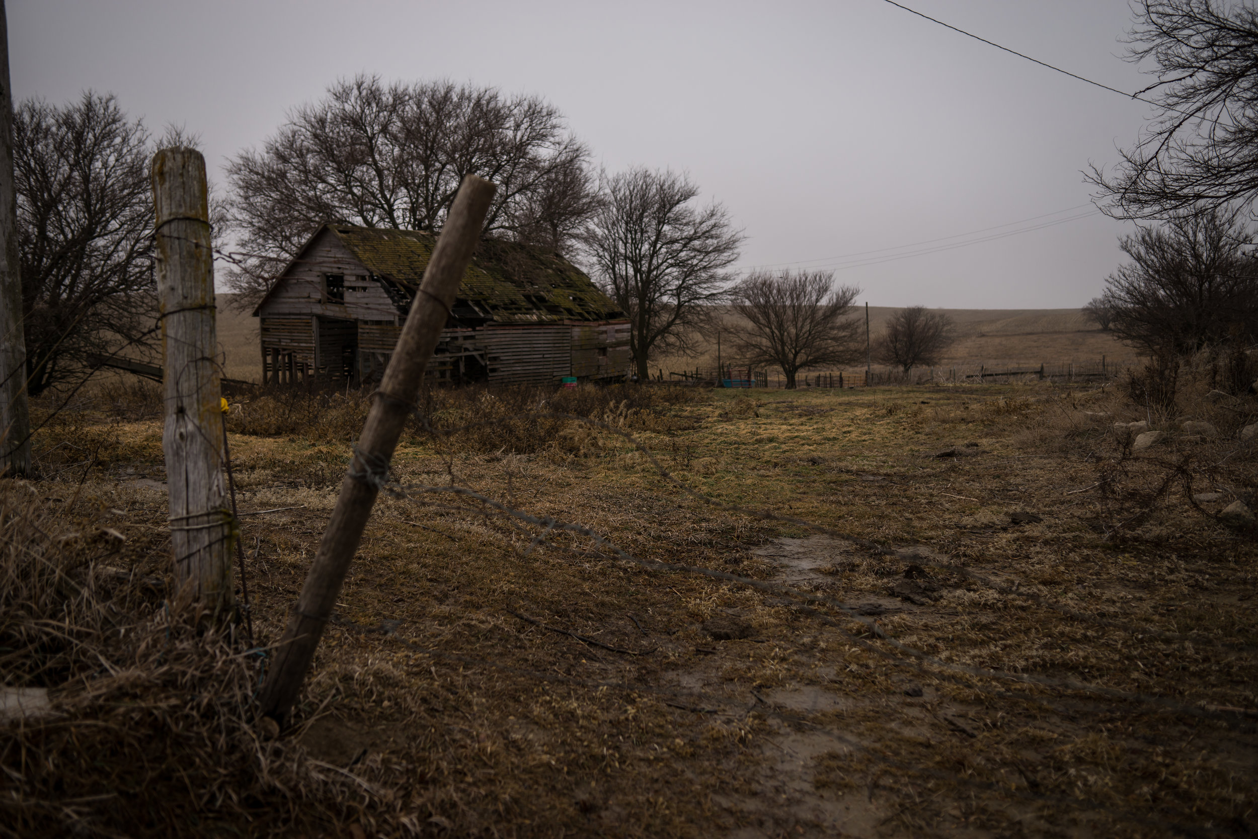 Abandoned house near the farm in Coleridge Nebraska