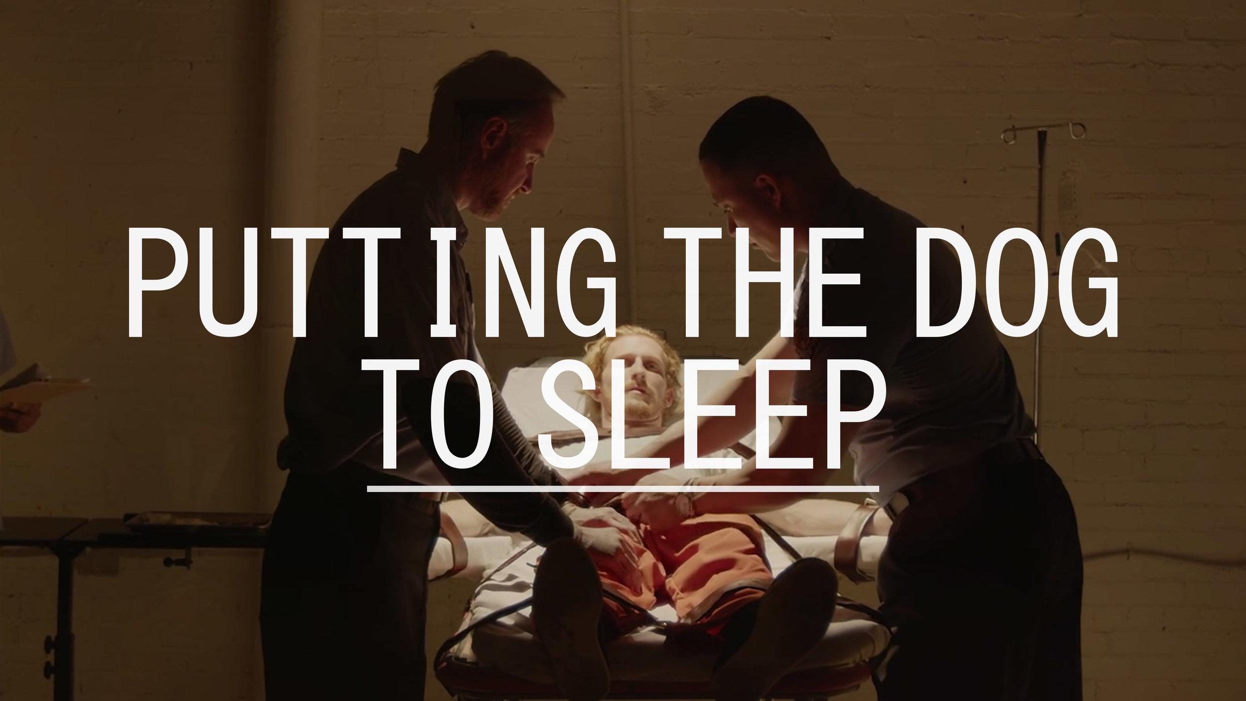 Putting the Dog to Sleep - Short