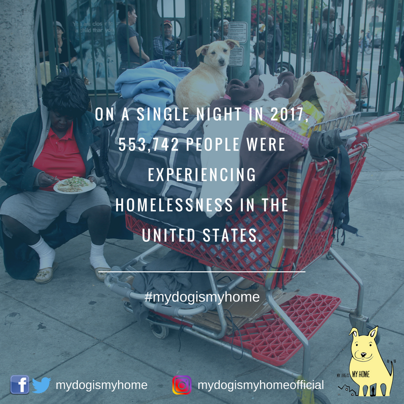 On a single night in 2017, 553,742 people wereexperiencing homelessness in the United States. (2).png