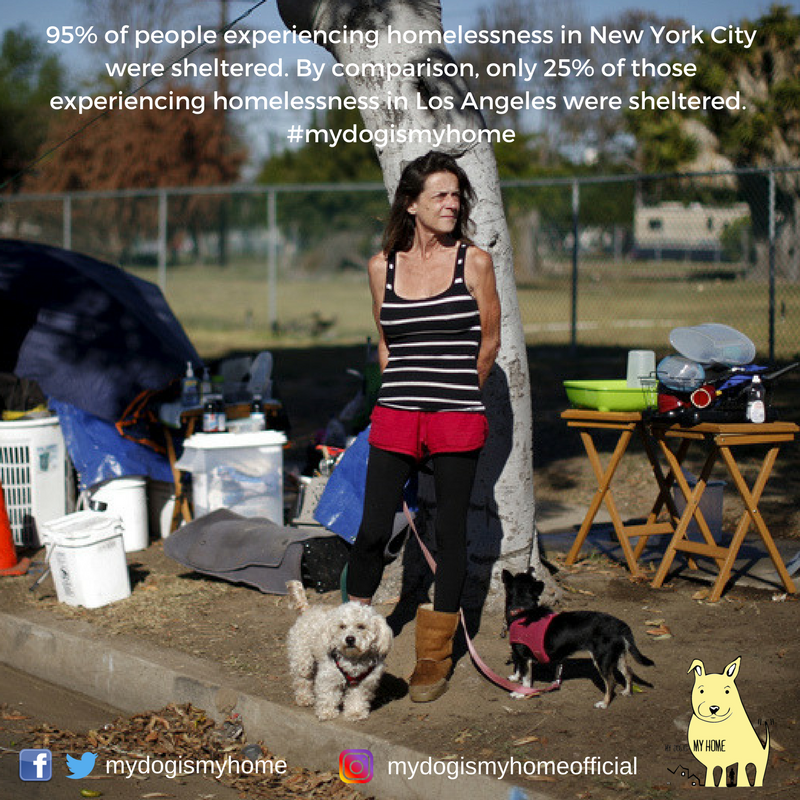Nearly all people experiencinghomelessness in New York City were sheltered(95%). By comparison, only 25 percent of thoseexperiencing homelessness in Los Angeleswere sheltered in 2017. (2).png