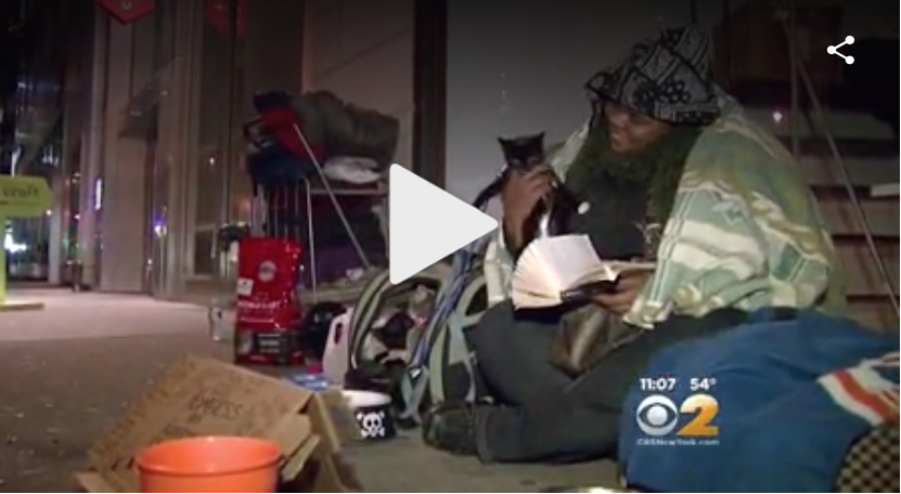 CBS New York interviewed Shaunyece in November 2015. In the interview, she talked about how the no-pets-allowed rule kept her out of the shelter system. Unfortunately, Shaunyece and her three cats still live outside today.