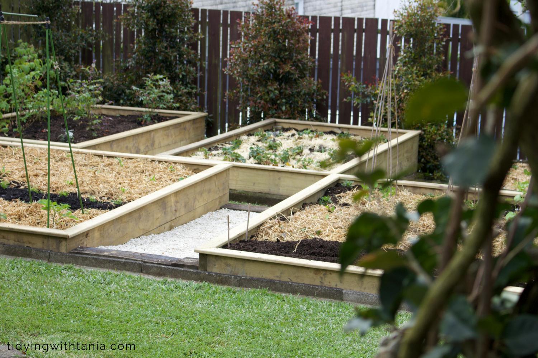 garden_beds.png