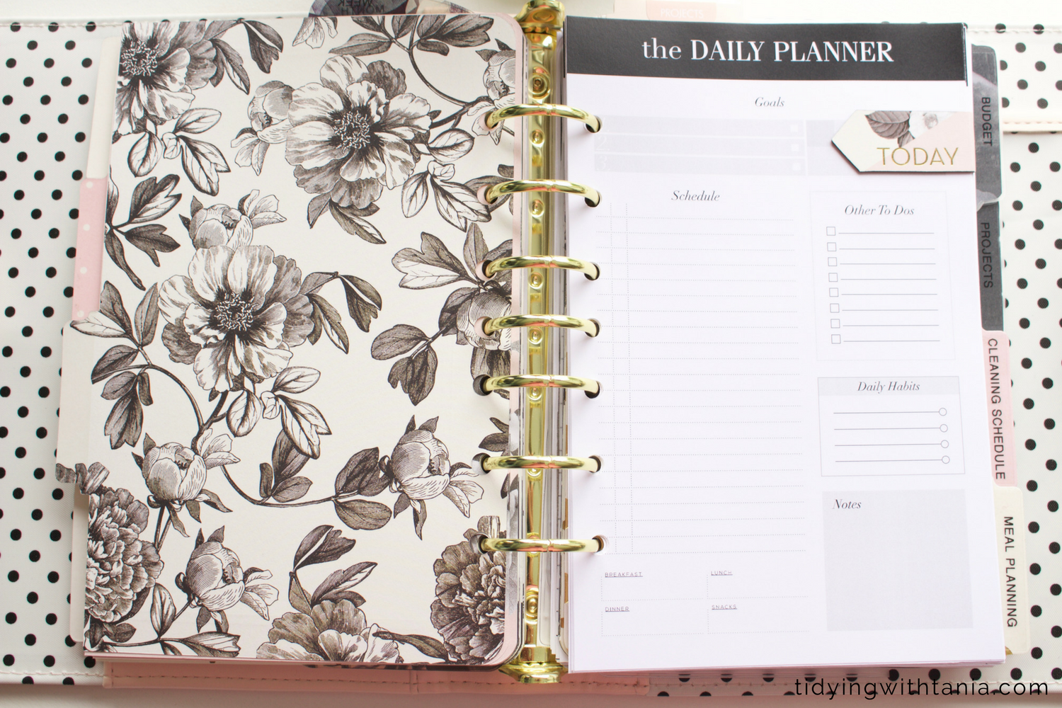 daily_planner.png