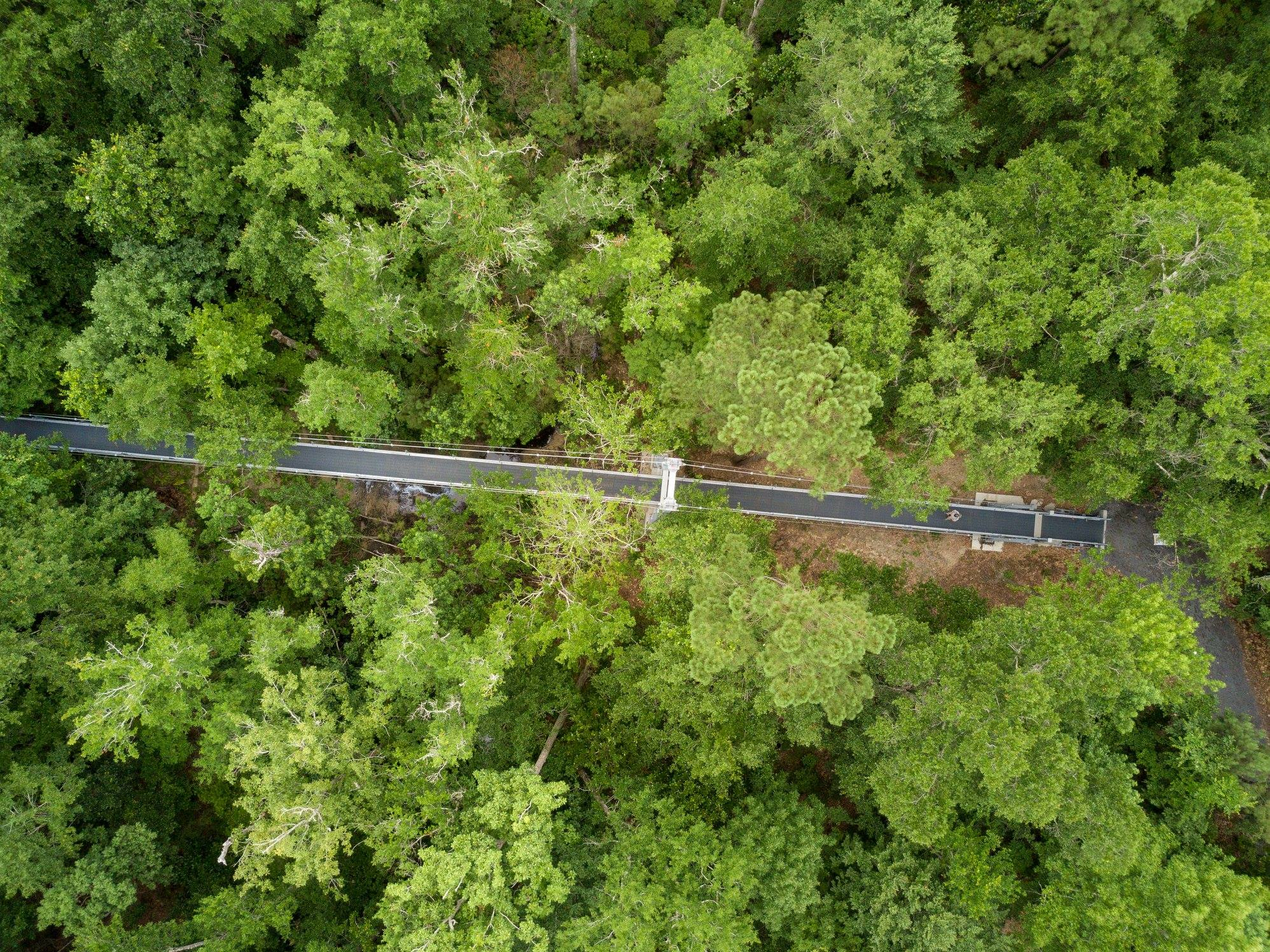 steel suspension bridge at usm mec.jpg