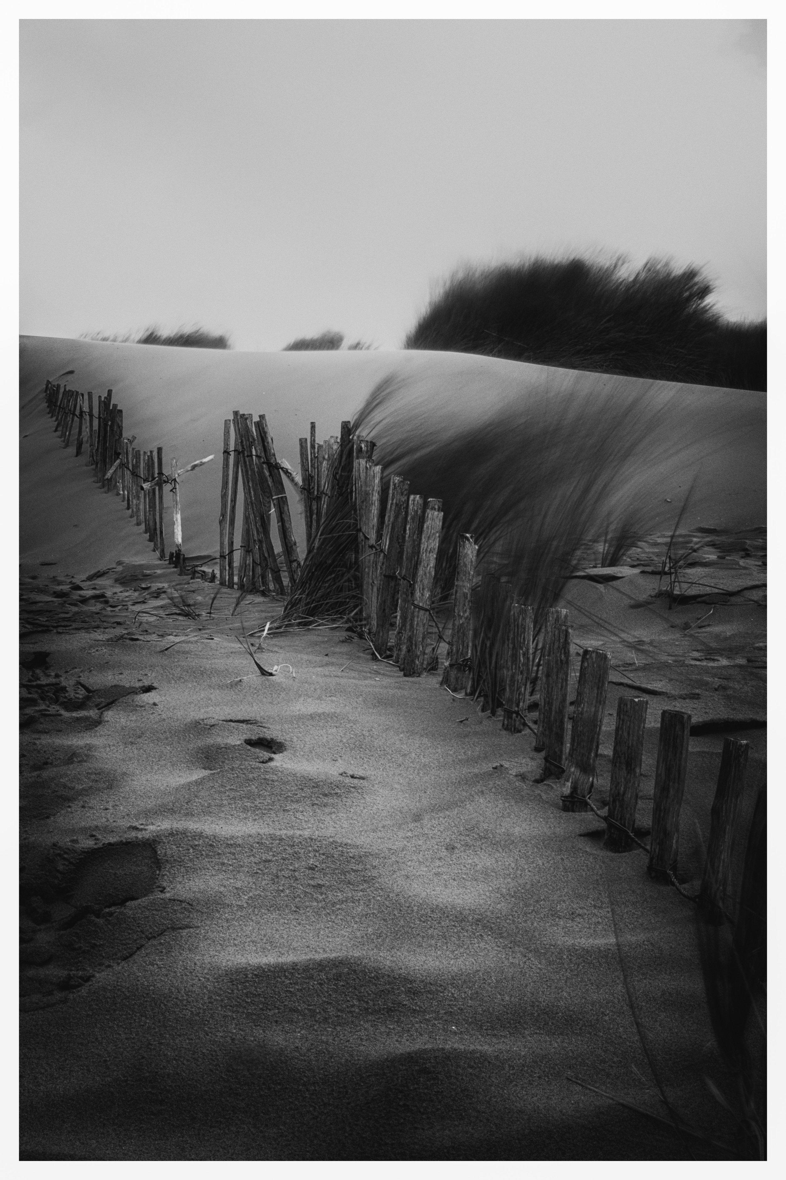 Buried Fence