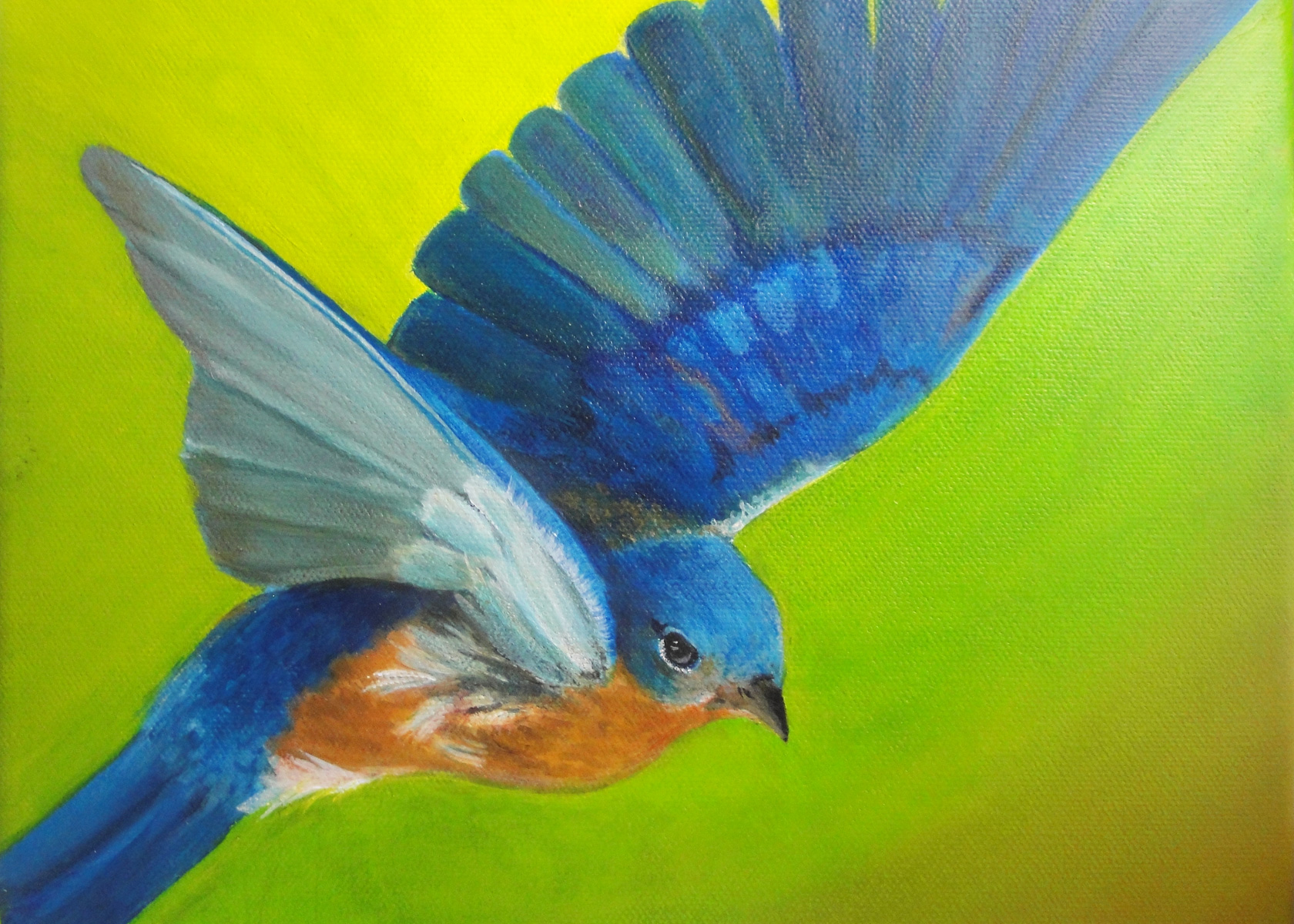 Bluebird of Happiness  Acrylic on Canvas