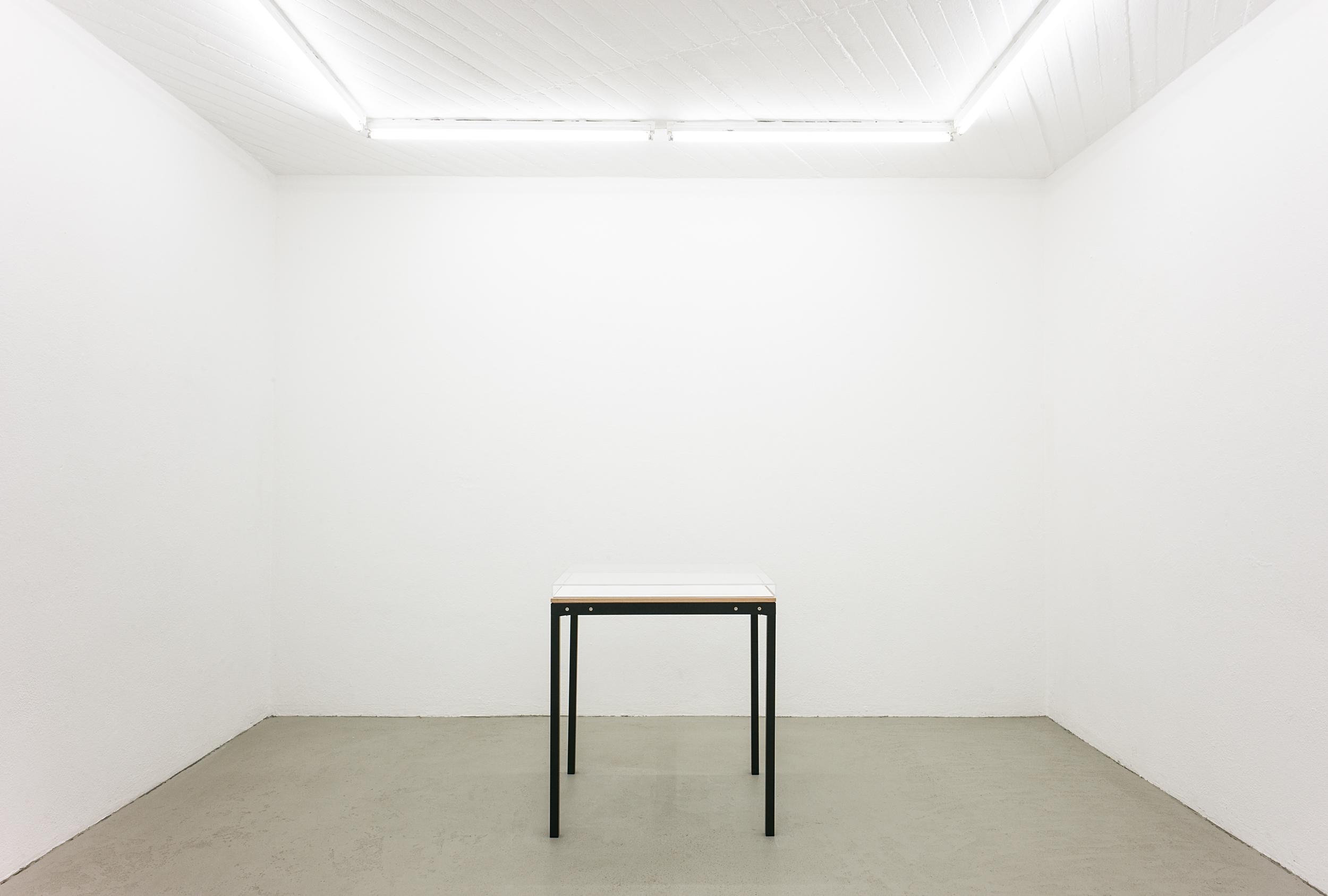 Installation at Bruch & Dallas, Cologne.  Photo: Martin Plüddemann