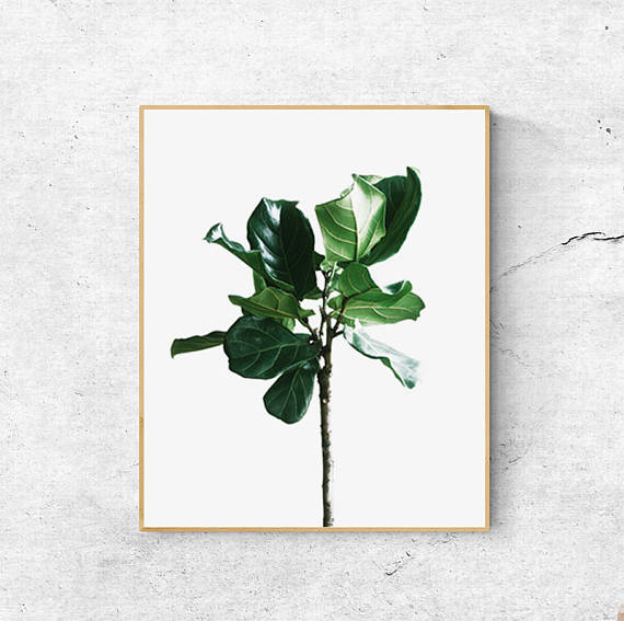 Etsy Leaf Wall Art £6.57