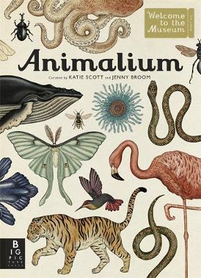 Animalium, Welcome to the Museum (Hardback), £20, Waterstones