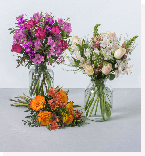 Bloom & Wild, 3 months of flowers - from £60