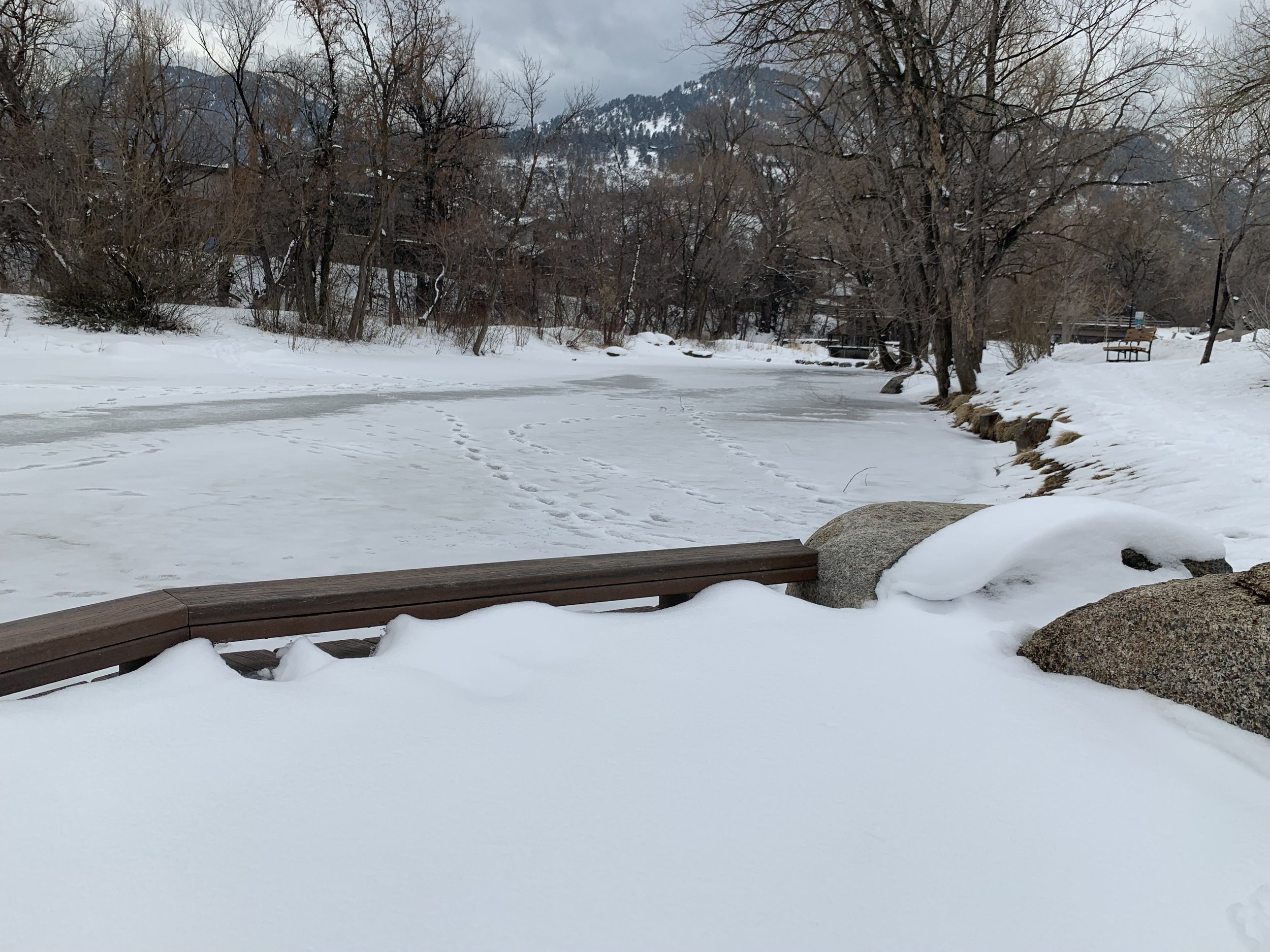The kids' ponds fully frozen over (early March).
