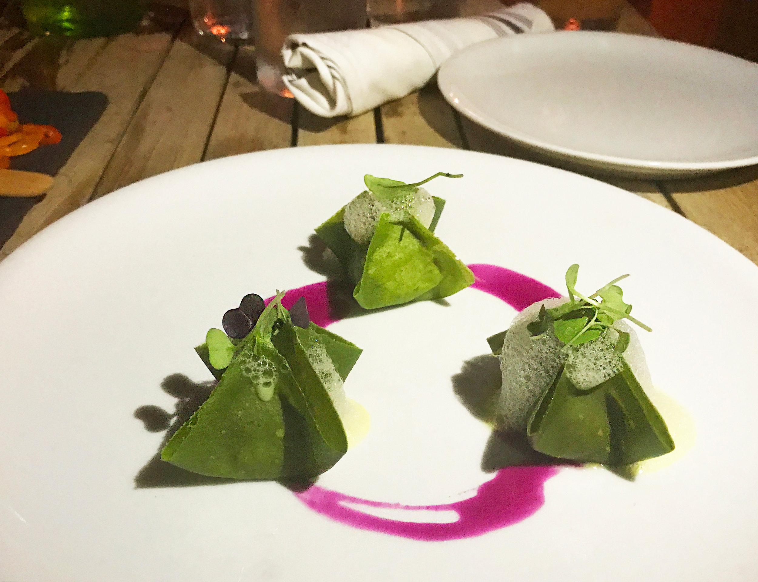 plant-food-and-wine-dumplings.jpg