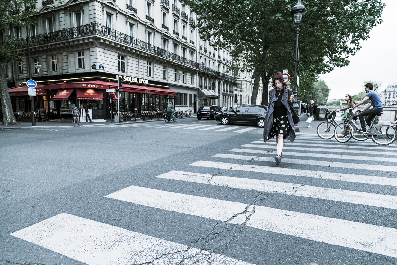 Zebra in Paris