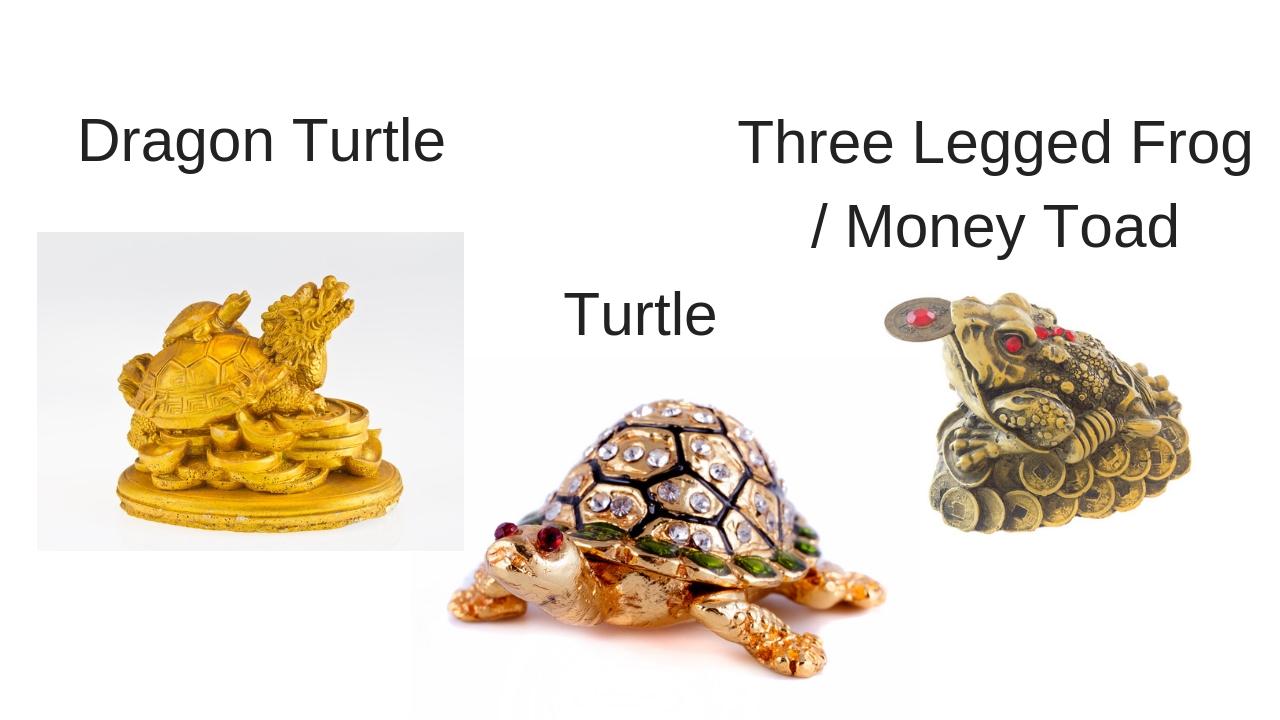 money frog 1.jpg
