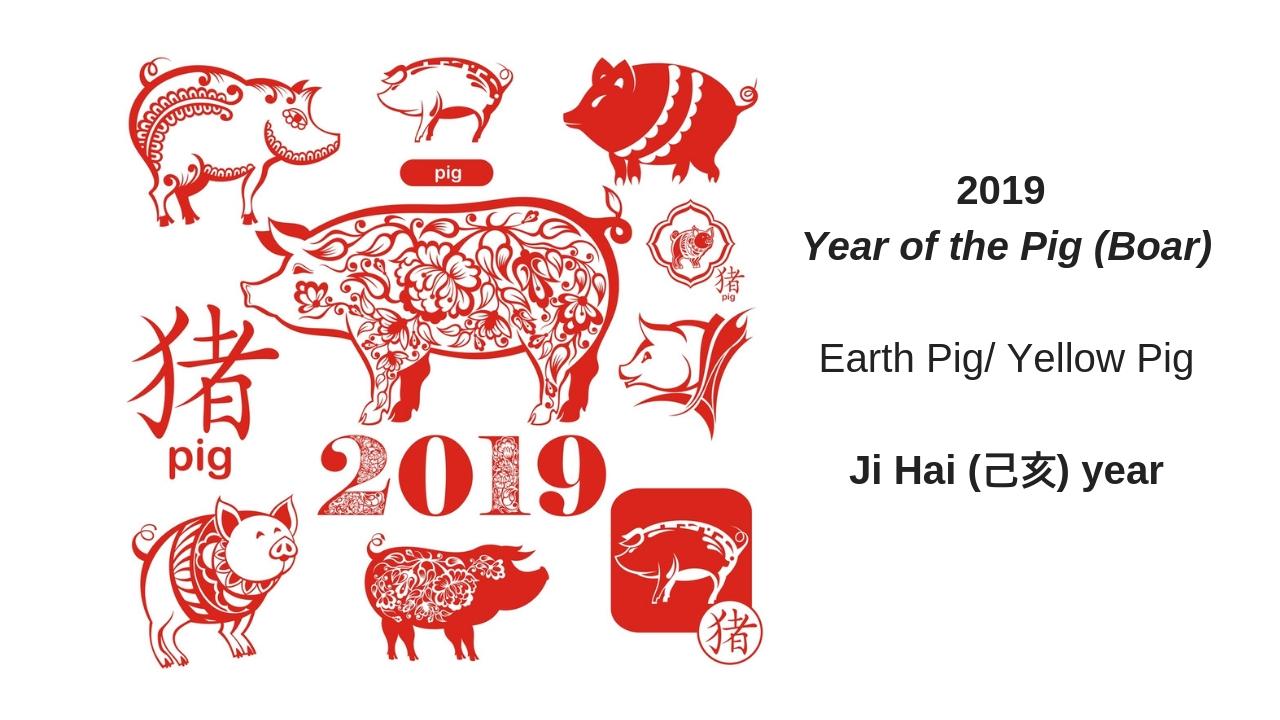 2019 Pig Year (2).jpg
