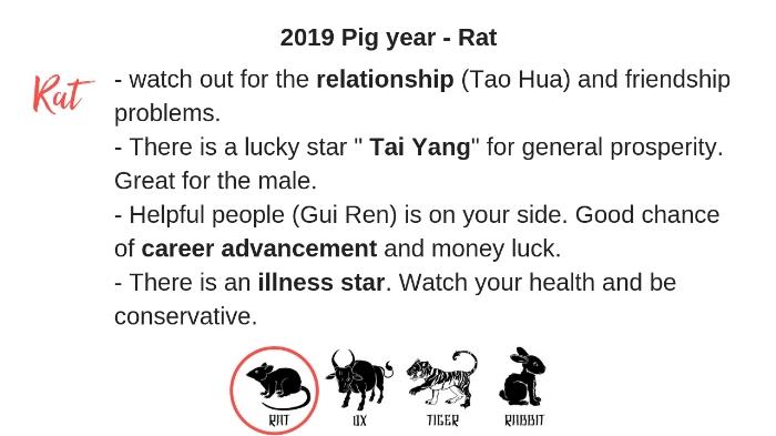 animal signs 2019 1.jpg