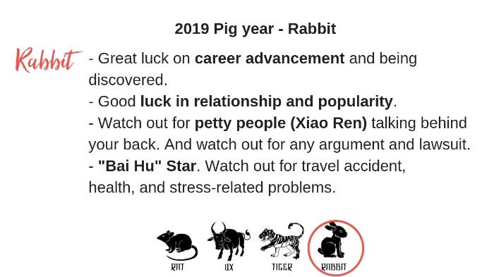 animal signs 2019 4.jpg