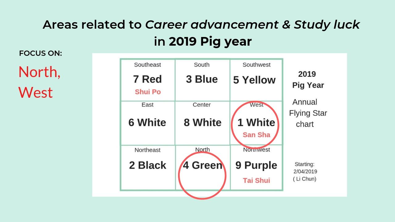 2019 Pig Year Feng Shui career study luck 2.jpg