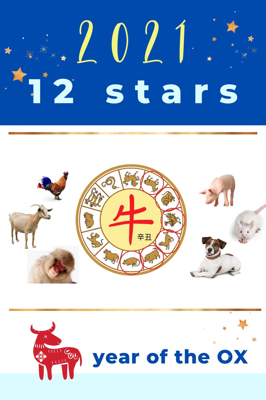 Horoscope December 12 2021