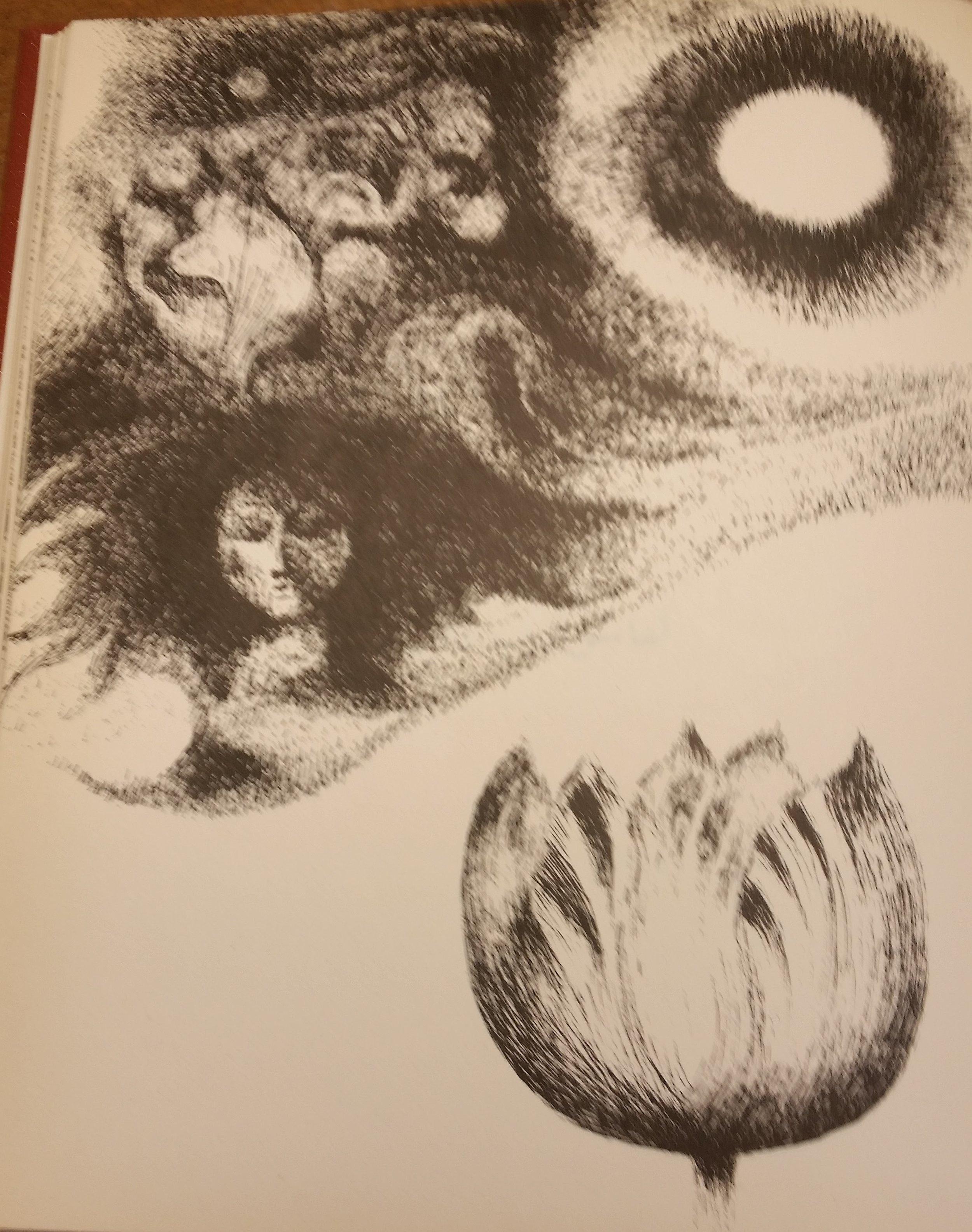 shiraz's moon - drawing 4