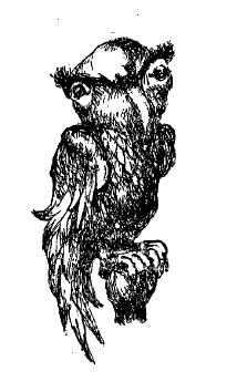 committee bird