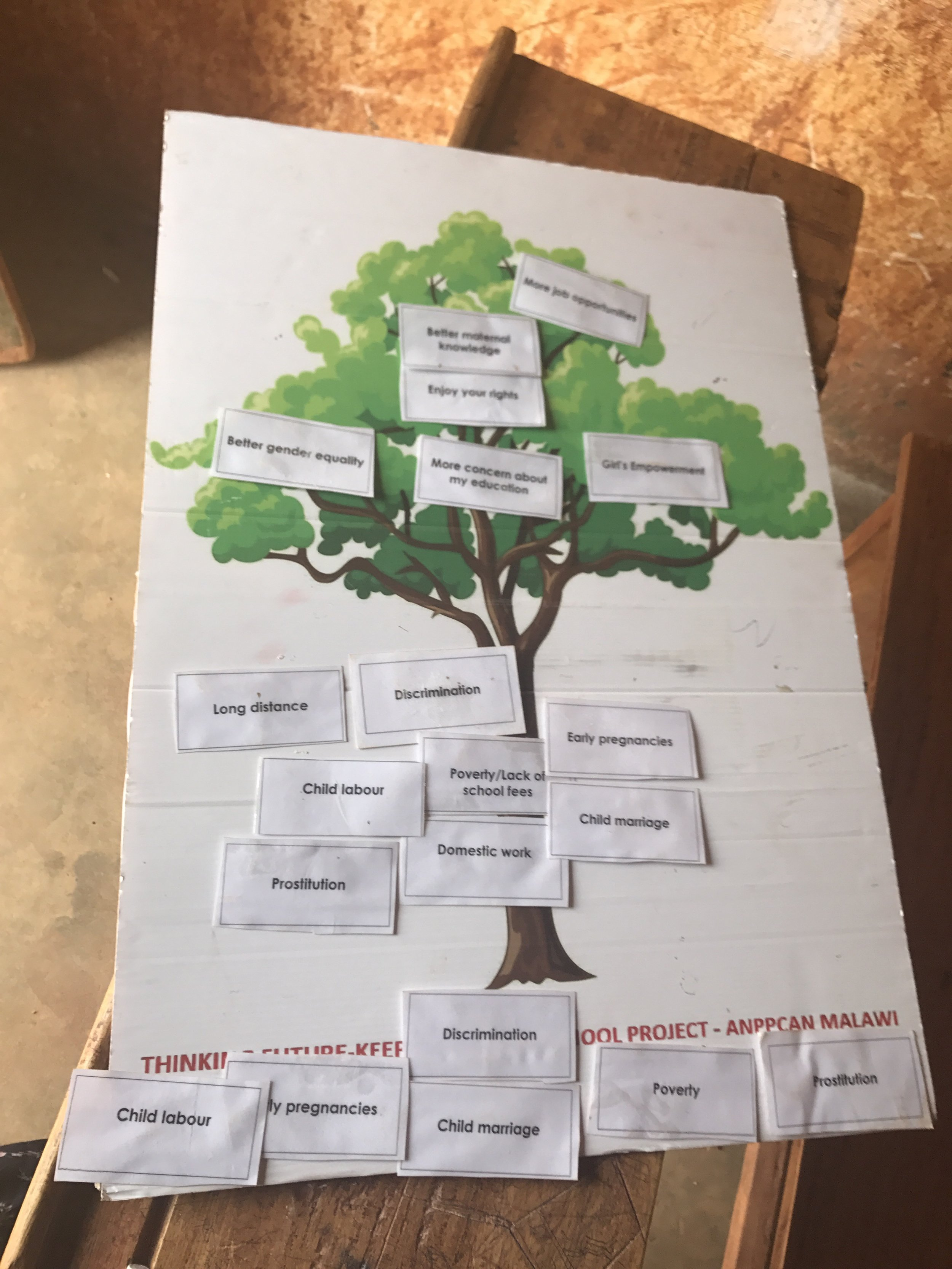 """They call this the """"Tree of Education"""" where they use active learning to work with the girls to understand the benefits of education (branches and leaves), the causes of school dropout (trunk), and the consequences of school dropout (ground). The girls have to identify each and place it on the right area of the tree."""