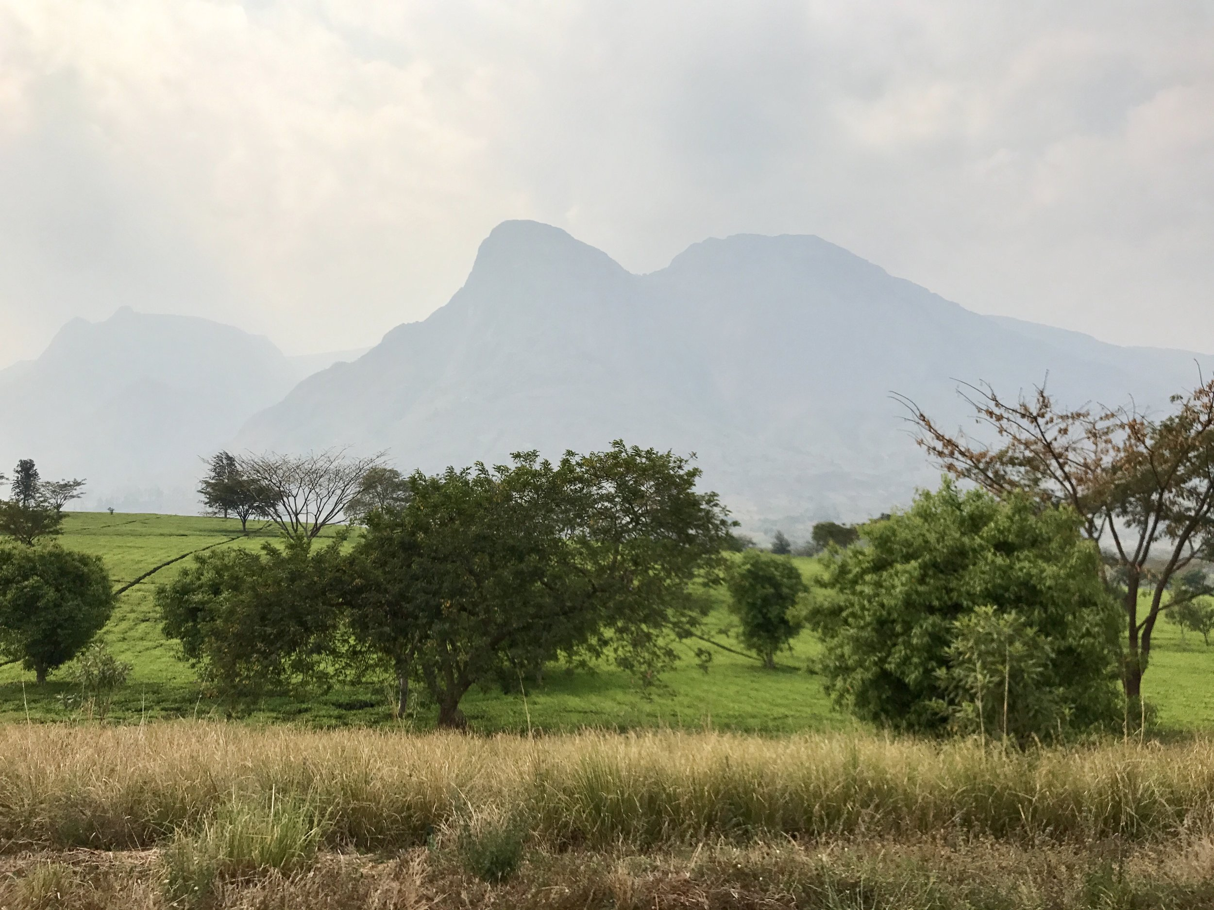 Mt. Mulanje--the highest mountain in Malawi