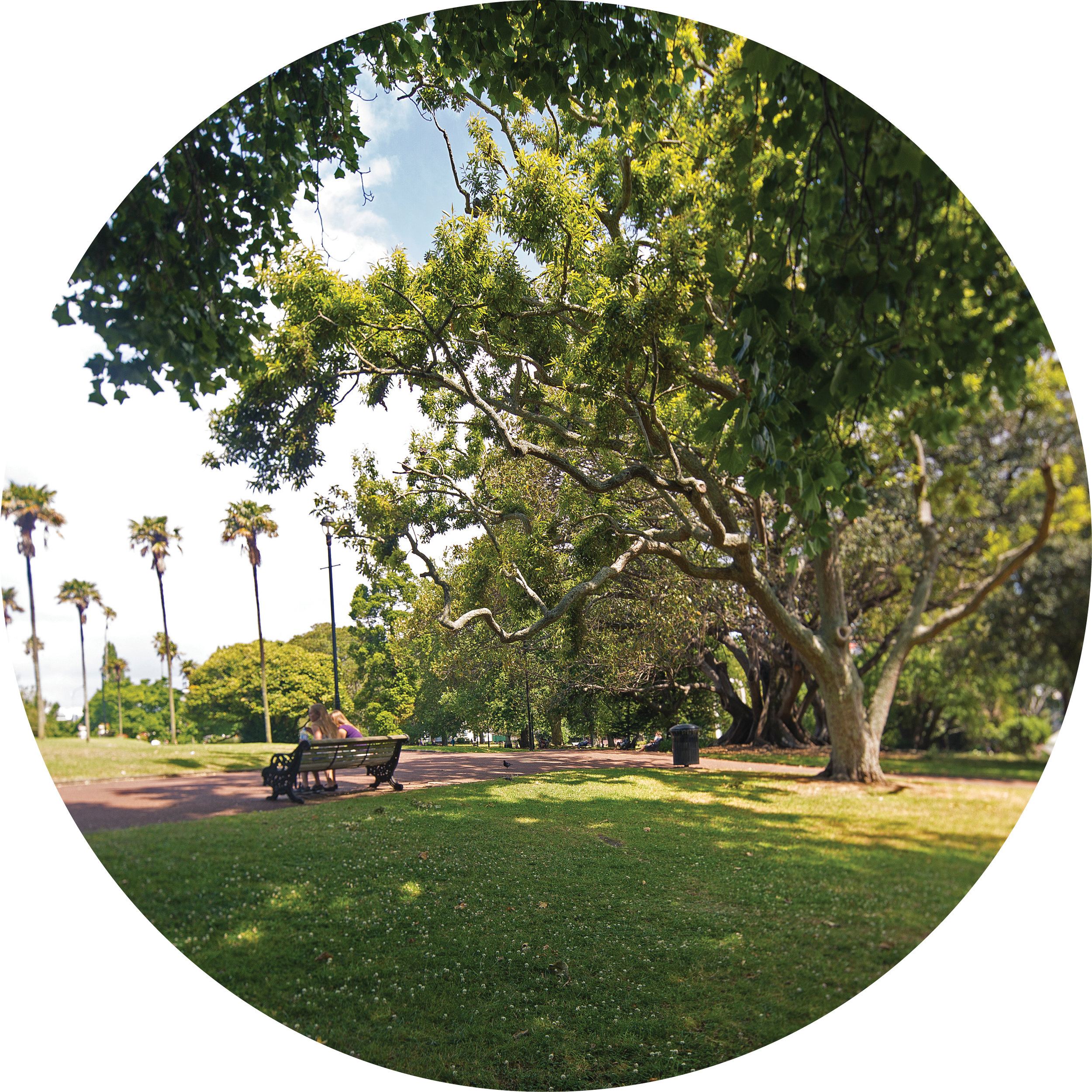 Parks_Circle.jpg