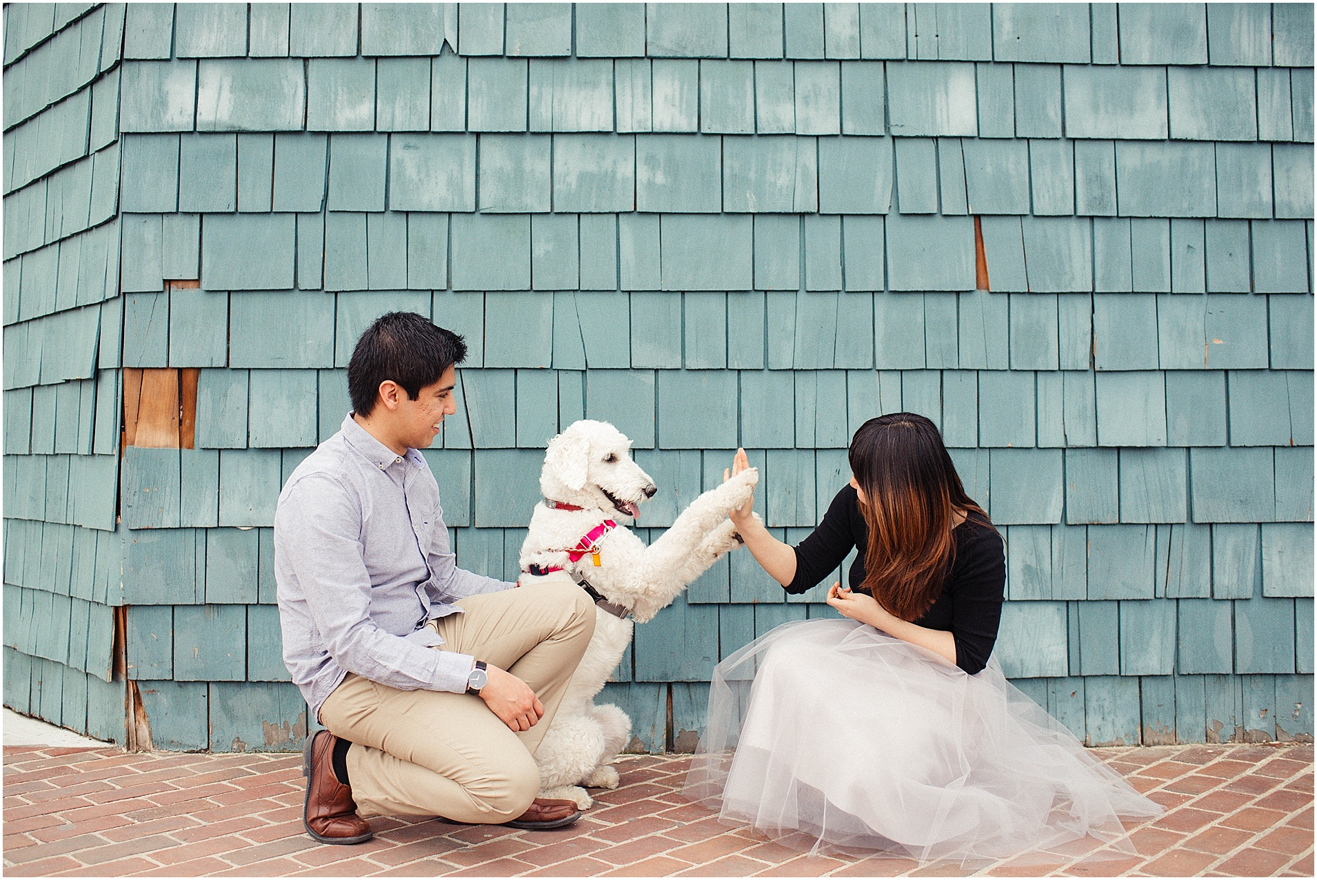 Old Town Alexandria Engagement Session with Goldendoodle puppy at Fletcher's Boathouse