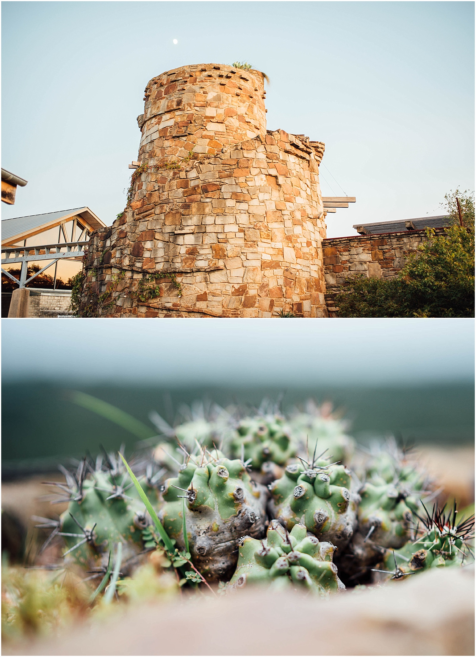 Stone Tower and Cactus Blush Pink Bridal Details at Lady Bird Johnson Wildflower Center Austin Texas Wedding