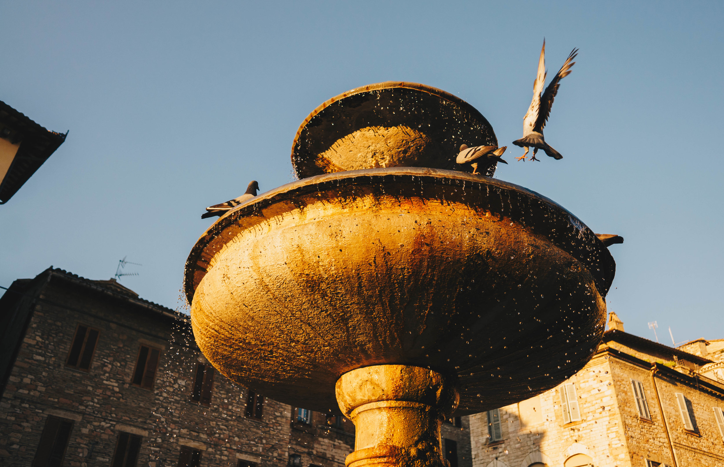 laurentina-photography-assisi-italy-fontana
