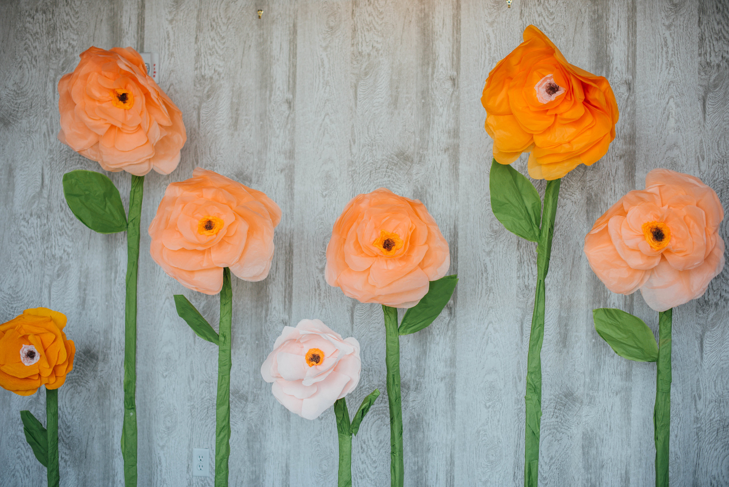 DIY Paper Flowers Photo Booth at Hotel Indigo
