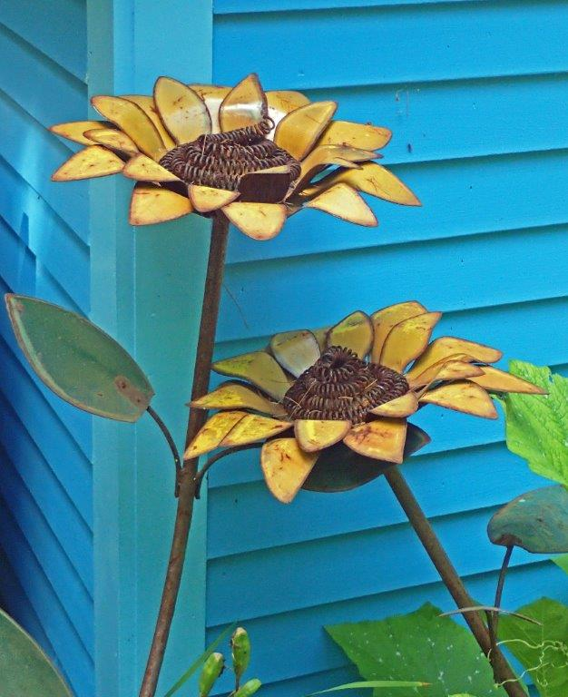 Sunflower - Carole Kincaid